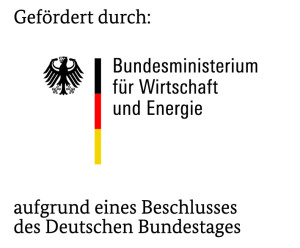 logo-bmwi-jpg(1)